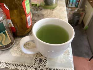 ウイルス対策 緑茶のカテキンパワー