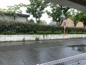 夏の天気は 怖いです