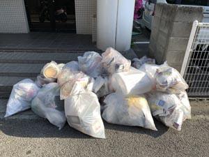 今日は プラスチックゴミの日