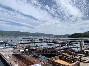 釣りクラブ 徳島清潮会 淡路じゃのひれフィッシングパークへ