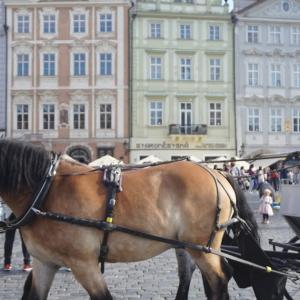 プラハ・ウィーン旅、その1。