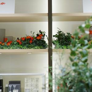 12/11-25 新宿伊勢丹1階装飾しています。