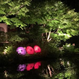 ちょっと京都へ