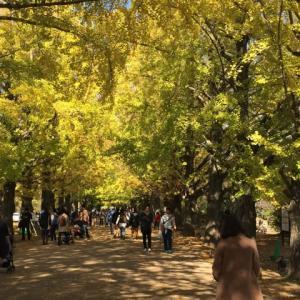 昭和記念公園の紅葉2019