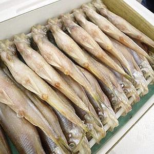 柳葉魚(シシャモ)