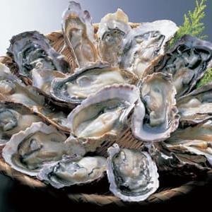 11月23日は「牡蠣の日」~「あんこうの日」でもあります!