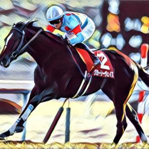 my厩舎2歳出資馬の夏競馬は終了_2歳馬の現状記録