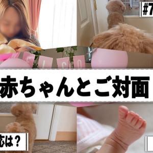 7ぷぅちゃん赤ちゃんと初めてのご対面~YouTube~