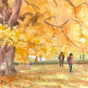新宿御苑の黄葉