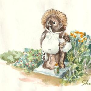 畑の番する小狸