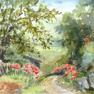 ヒガンバナの咲く小道