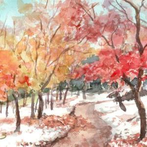 箱根の初雪