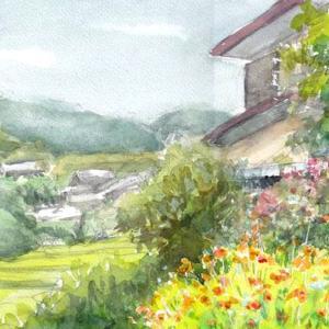 黄花コスモスの風景