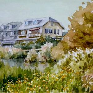 大根公園の池
