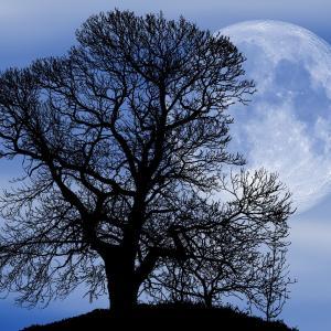 双子座の満月だけど、注意事項!