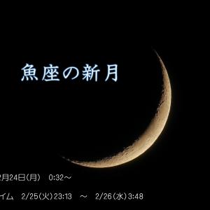 2020年2月24日 魚座の新月