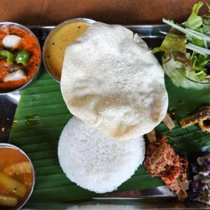 南インド料理 アーナ ジャーナ(鹿沼市)