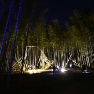 「Bamboo Winter Lights 2020」、若竹の杜 若山農場(宇都宮市)-3