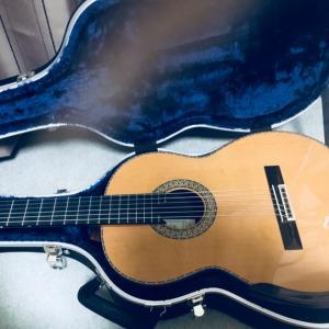 新しくギターを購入しました
