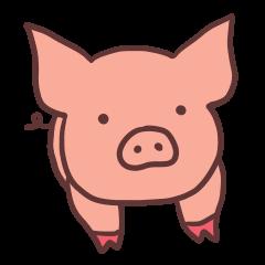今日は豚の日
