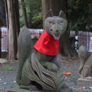 豊川稲荷 狐塚