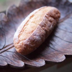 みかん酵母のパン