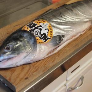 雄武漁協から「雄宝」の新巻鮭が到着、人生初の味わいはいかに?