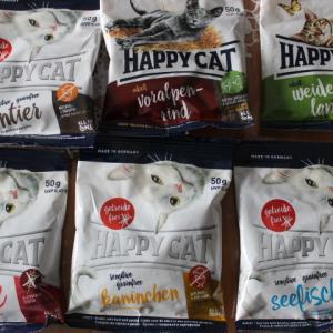 HAPPY CATとプロステージ