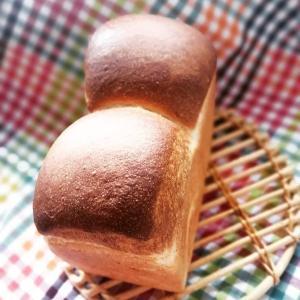 🍞丹沢酵母の湯種食パン🍞