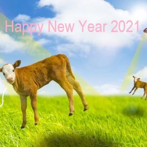 2021年上半期と1月の運勢~風のエレメンツ編(双子座・天秤座・水瓶座)