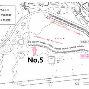 □ 明日はgök出張 @京都府立植物園 □
