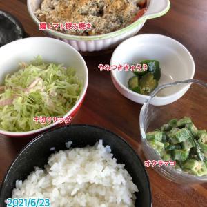 6月23日(水)の夕飯