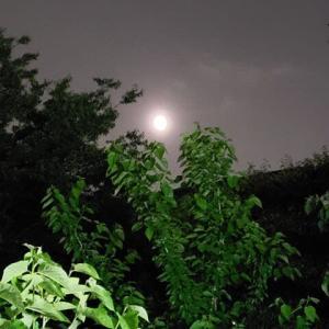 皆既月食の夜に5.26