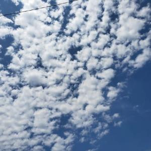 8月01日の雲