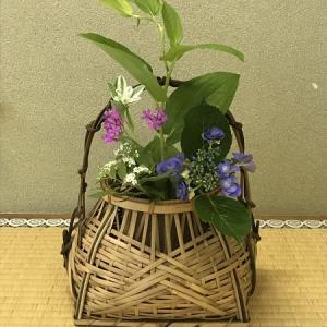 稽古の花と今日の紫陽花