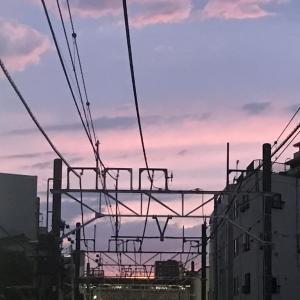 夕方の景色・日比谷通りを公園へ