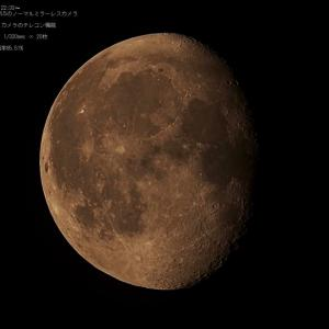 20/08/08  昨夜逢ったお月様。 月齢17日目。