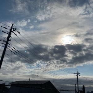 20/11/12  スッキリしない天気にスッキリしちゃった太陽黒点…。