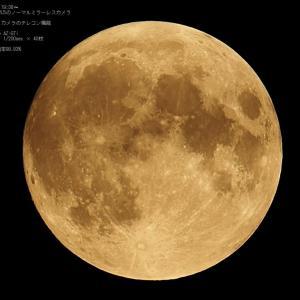 21/06/25  曇る前に撮った、昨夜のまんまるなお月様…。月齢14日目でした…。