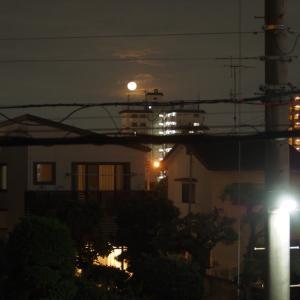 21/09/22  昨夜の「8年ぶりの満月での中秋の名月day」は曇り空から…。と月面Aの訂正。と今日の太陽黒点。