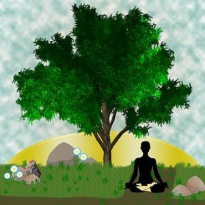 瞑想から今の体調がわかる!?