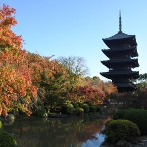 またまた京都に行ってきました。今回は東寺へ‼️