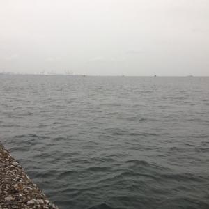 【釣行】福浦岸壁1118 遠投カゴ 午後のアジ狙い..