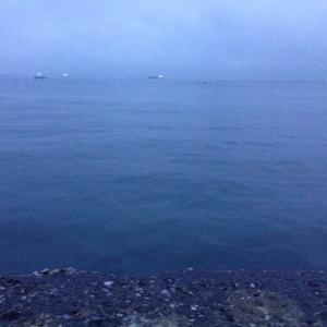 【釣行】福浦岸壁1115 遠投カゴ 渋い中での捕獲