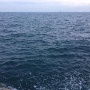 【釣行】福浦岸壁1028 遠投カゴ ここのところアジ...