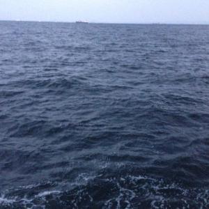 【釣行】福浦岸壁1122 渋渋アジゲット出撃
