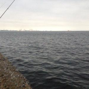 【釣行】福浦岸壁1002 遠投カゴ 久しぶりーデカサバ君?