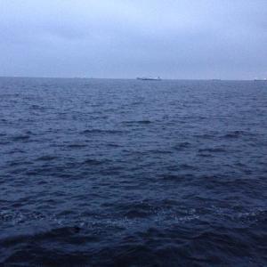 【釣行】福浦岸壁0730 遠投カゴ アジ寄ってるかな?
