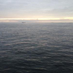 【釣行】福浦岸壁0818 遠投カゴ アジ狙います