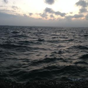 【釣行】福浦岸壁1214 遠投カゴ 今年も最後かなぁ~...
